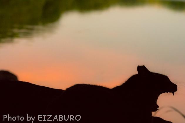夕暮れの湖岸